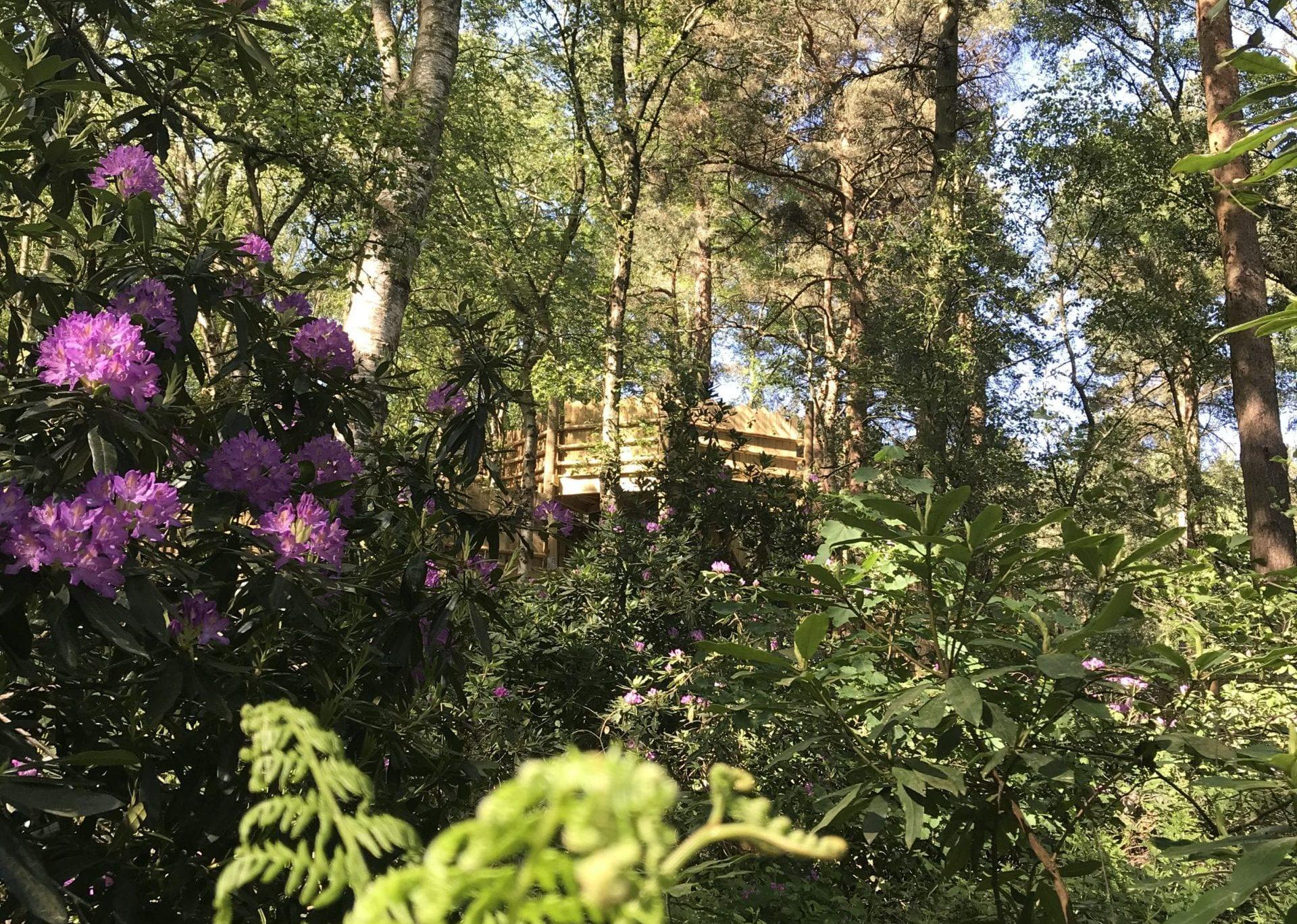 BeWILDerwood Cheshire Opening Date